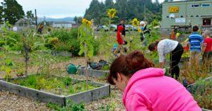 Seashore Family Literacy Waldport Oregon 10